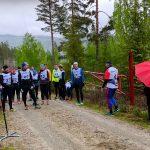 bakkelp-lp-gulsvik-fjellvei-motbakke2