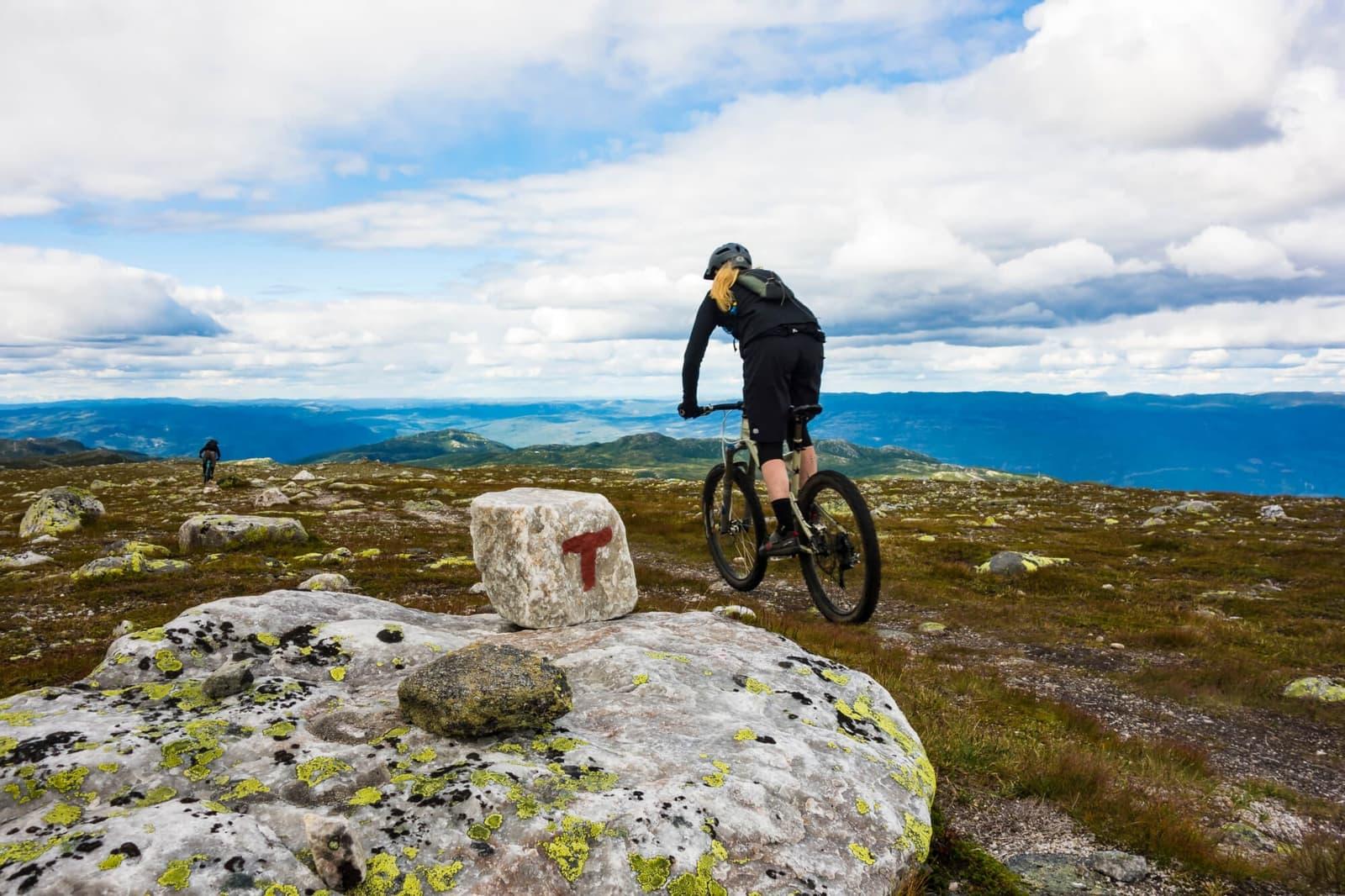 Visste du at Høgevarde har et stadig voksende nettverk av sykkelstier? Ta med egen sykkel eller lei på stedet!